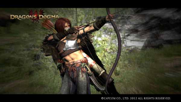 Dragon's Dogma bow