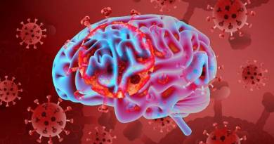 The human brain is also affected by the Coronavirus, experts say