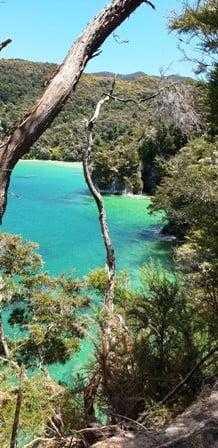 Amazing Abel Tasman Coastal Views