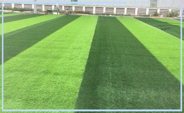 Thi công sân BÓNG ĐÁ cỏ nhân tạo tại Bình Định