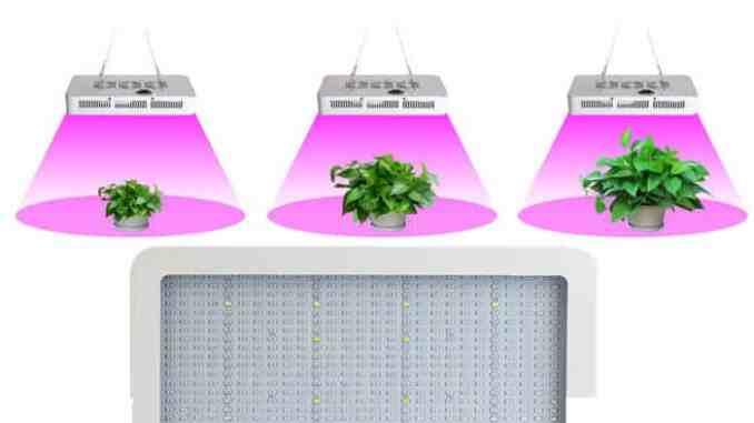 LED lampa za uzgoj marihuane