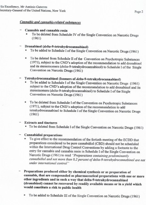 legalizacija kanabisa je sljedeći potez WHO organizacije