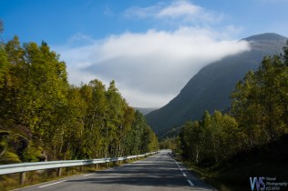 Another empty road and the fog and low clouds are giving way to sun and blue skies!