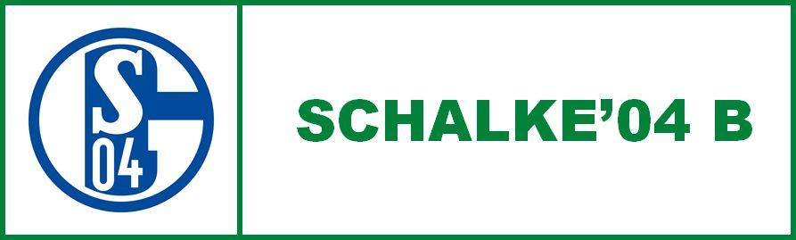 Schalke'04 B