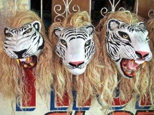 tiger, mask