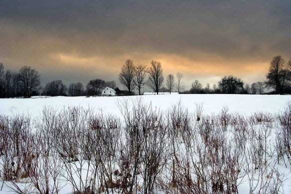 farm, snow, winter
