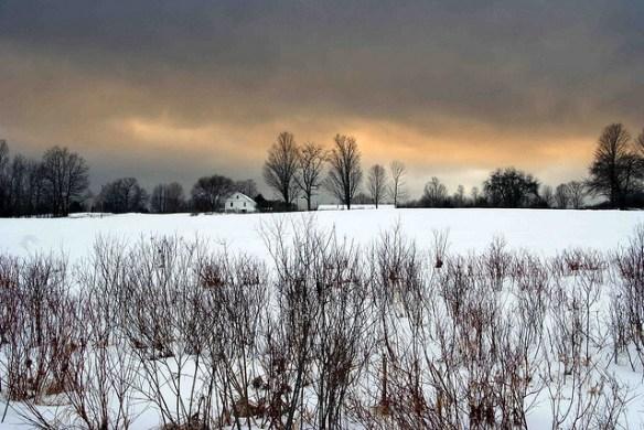 farm, snow, winter