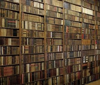 books, bookshelves, library