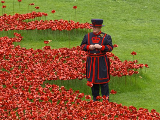 poppy poppies Beefeater London