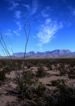 Chisos Mountains, West Texas