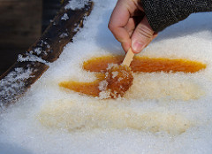 maple sugar popsicle