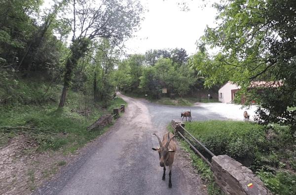 Taurinya en randonnée
