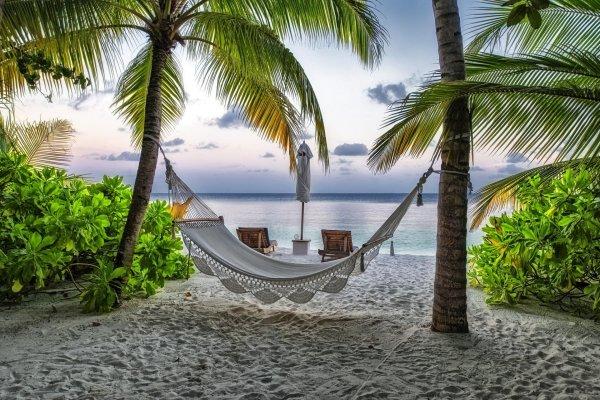 мальдивы пляж гамак пальмы курорт отдых лето HD обои для ...
