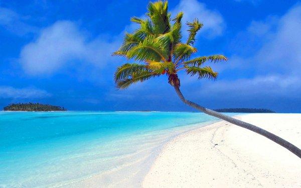 тропики небо море океан остров песок пляж пальма HD обои ...