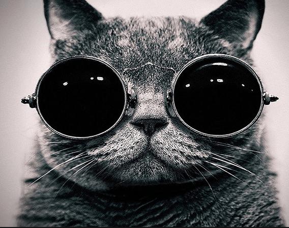 Крутые картинки на Аву в Ватсап | Фото на аватарку для крутых