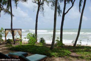 Palmengarten direkt am Meer