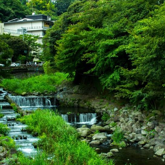 0907須雲川沿いに出ます!綺麗ですね(*^ω^*)
