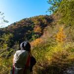 【登山】鍋焼きうどんを求めて鍋割山へ!20181108