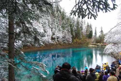 eau paysage naturel arbre lac printemps