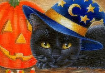 1986x1146 cute cat cute cat wallpaper halloween appealing halloween cat wallpaper pics of cute style and ideas. Page 8 Hd Black Halloween Cat Wallpapers Peakpx
