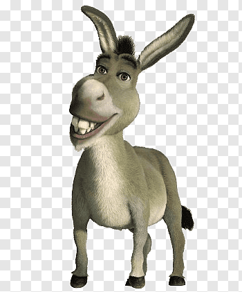 Donkey PNG | PNGWave