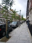 Beaumont Street, Marylebone now planted with 14 Amelanchier trees