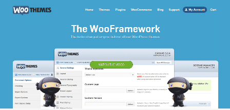 remove get smart with the thesis wordpress theme from diythemes