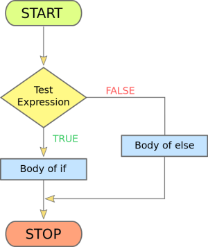 PHP Control Structure Part I: PHP if, ifelse statement