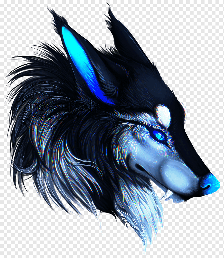 Black Wolf Illustration Dog Arctic Wolf Drawing Anime Wolf Blue Mammal Animals Png Pngwing