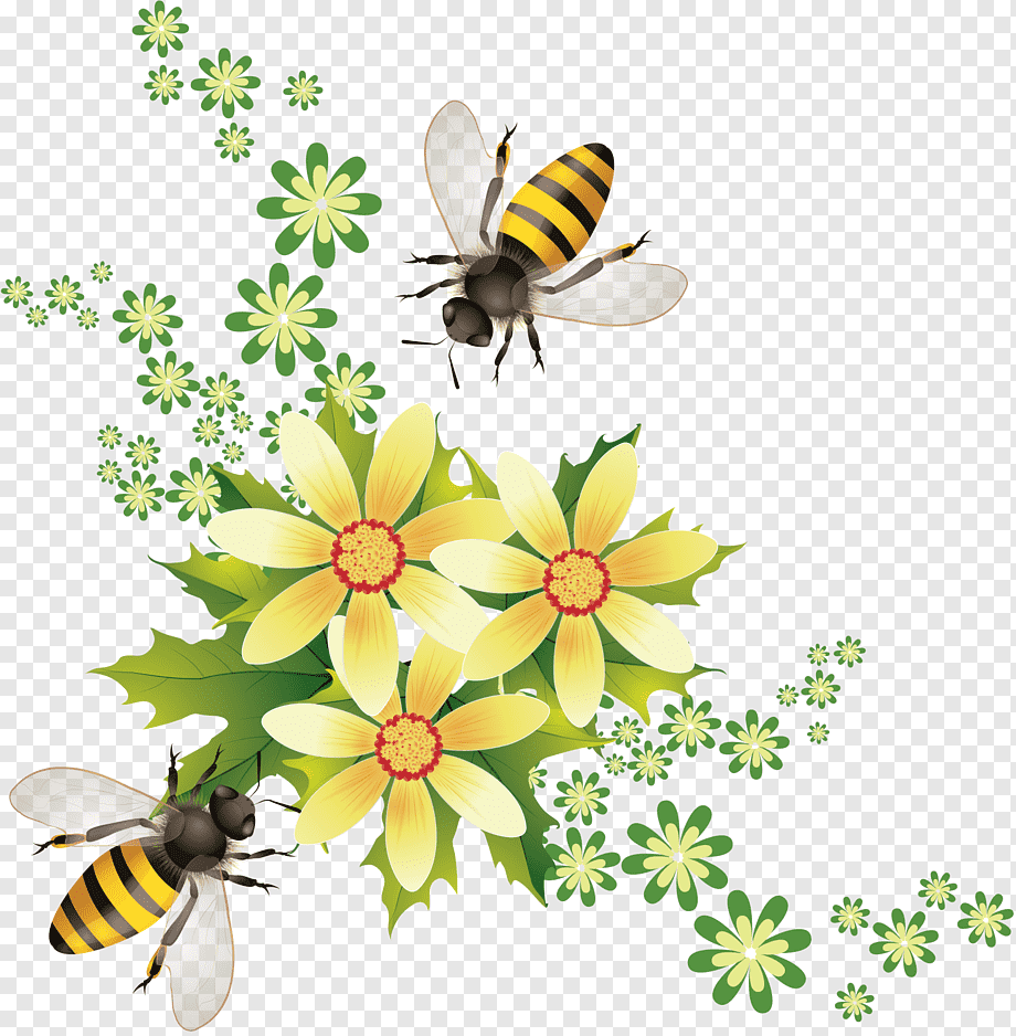 Honey At Honeycomb Illustration Tea Mu0101nuka Honey Bee Manuka Honey Honey Flowers Creative Honey Bee Food Taobao Png Pngwing
