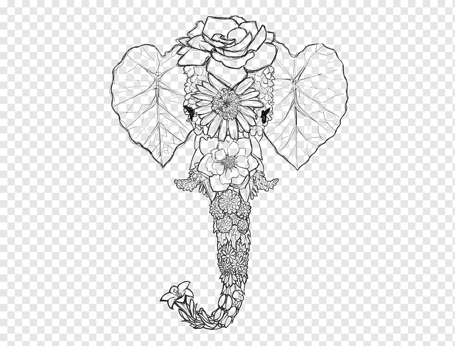Elephant Drawing Coloring Book Line Art Elephant Head Painted Animals Retro Png Pngwing
