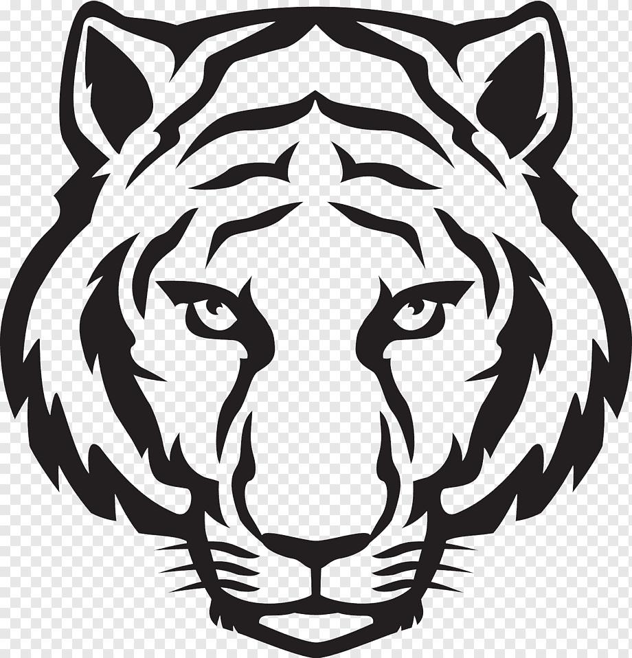 Black Tiger Tiger Drawing Art Sketch Tiger White Mammal Pencil Png Pngwing