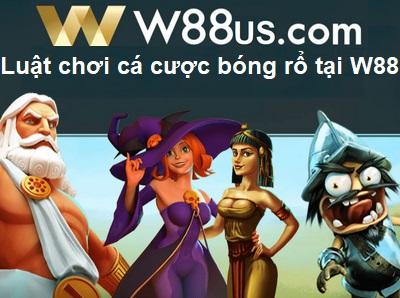 luat-choi-ca-cuoc-bong-ro-tai-w88