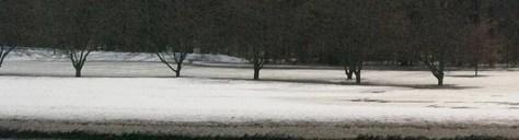 Photo of flood water in park along Tillman Road