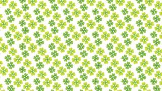幸せの象徴。四つ葉のクローバーの包装紙