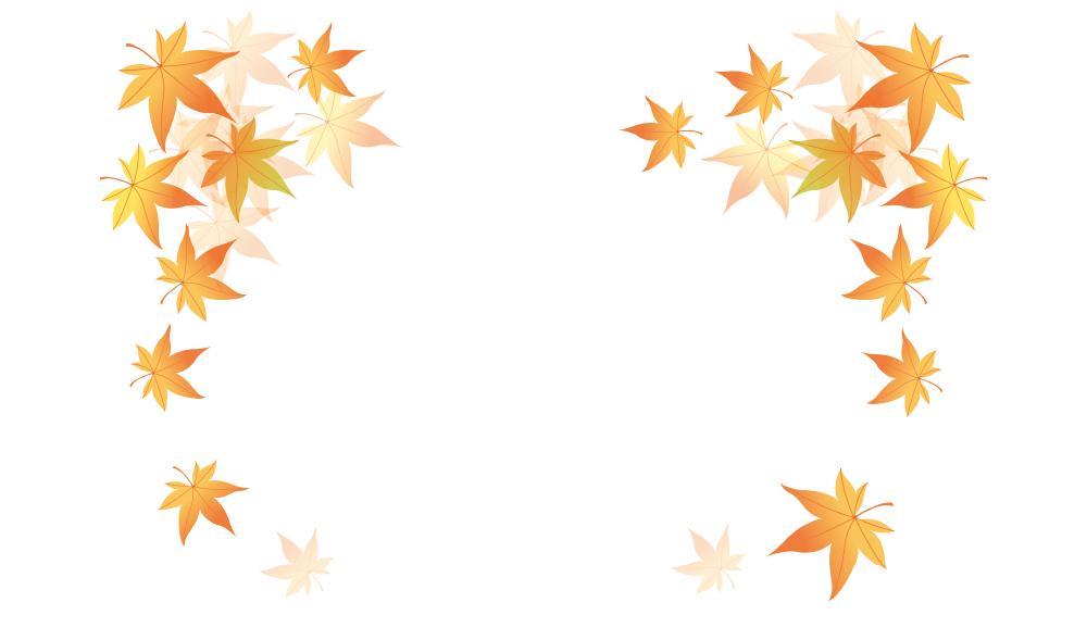 秋本番!舞い落ちる紅葉の包装紙