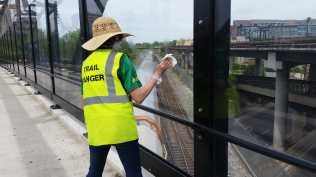 A woman Trail Ranger wears a big floppy hat, high viz vest saying Trail Ranger and plastic gloves. She is facing away from the camera wiping off graffiti on a glass bridge wall across the Redline tracks.