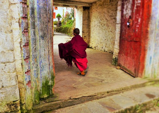 Un monje novicio corriendo hacia el monasterio. Young novice running to the monastery, Tawang, Northeast India.
