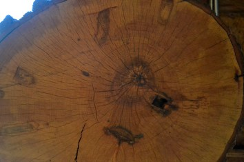 Proof that people were tapping maple trees long before B's family
