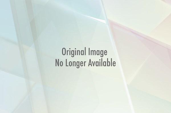 Bacon Tenderloin Wrapped Venison Roast