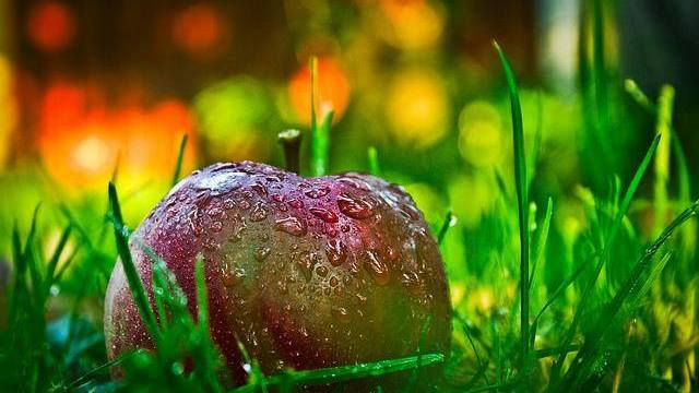 Saftiger Apfel Körper reinigen entgiften