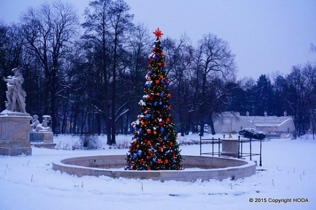 ワジェンキ公園 クリスマス