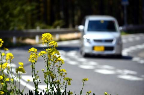 交通事故における過失割合の疑問!?駐車場内の事故の場合は?