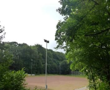 2015-07-29_1000972_Volkswald1