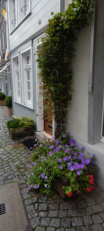 In Werden schmücken Blumen zahlreiche hauseingänge, hier eine Blumenpracht in der Grafenstraße.