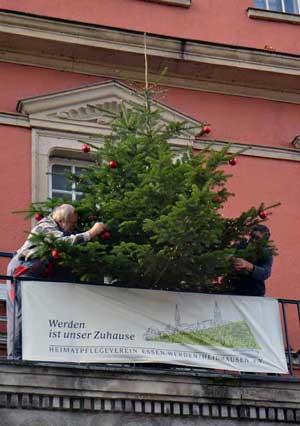 Ein Weihnachtsbaum für das Rathaus