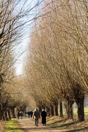 Winterspatziergang entlang der Ruhr.