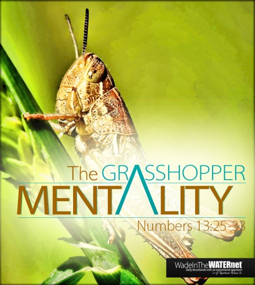 grasshopper_post