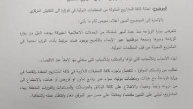 Photo of مرتضى يواجه الفبركات الإعلامية بإحالة كافة المشاريع المموّلة من المنظمات الدولية الى التفتيش المركزي