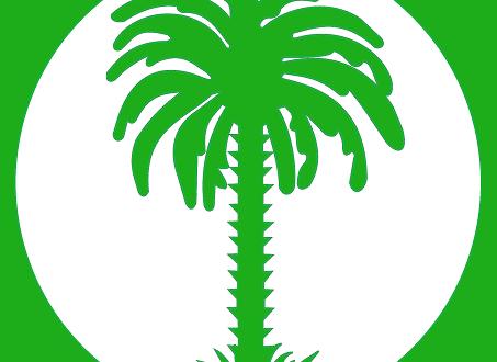 تواصل يختار مرشحيه للمجالس الجهوية بموريتانيا